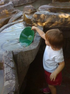 Panning for gold just outside of the Lost Dutchman's mine is a favorite for my kids!