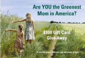 the greenest mom