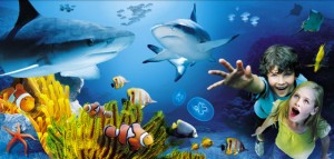 Sea Life Aquarium of Arizona